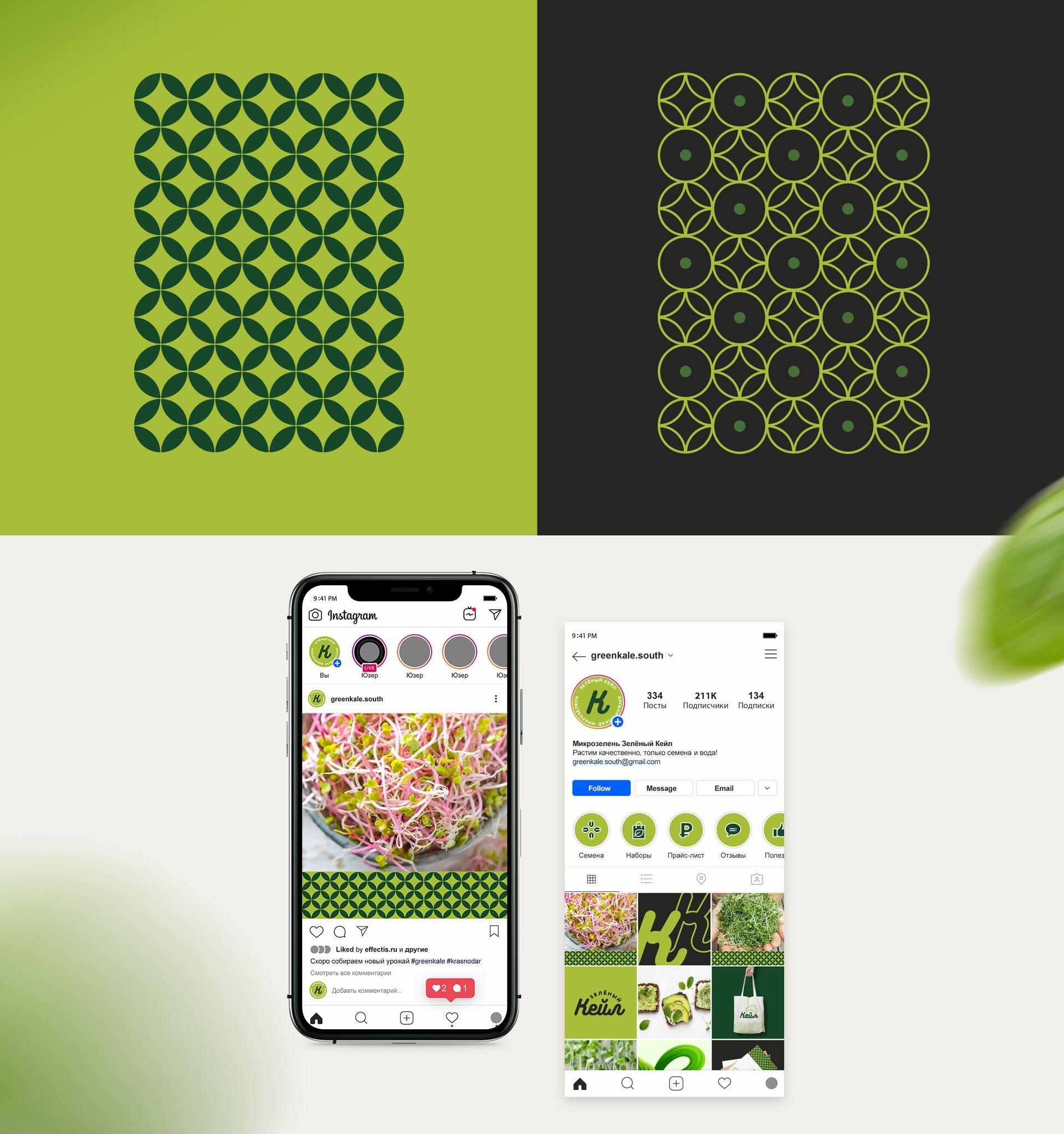 Green-kale-5