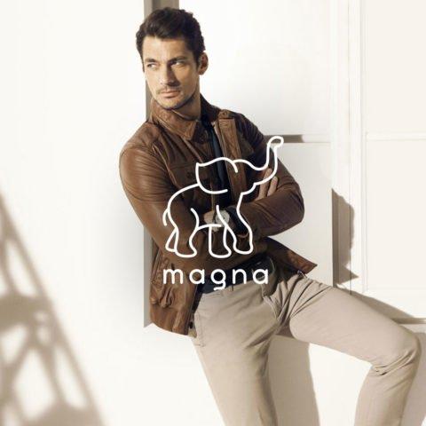Фирменный стиль и нейминг Magna